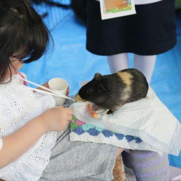 International Children's Day at Shinagawa International School (SIS)