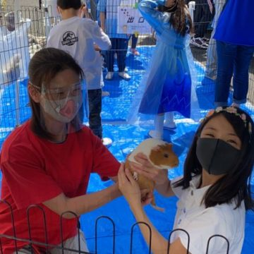 Students visit birds in pet animal zoo
